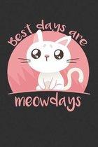 Cat Best Days Are Meowdays Kitten