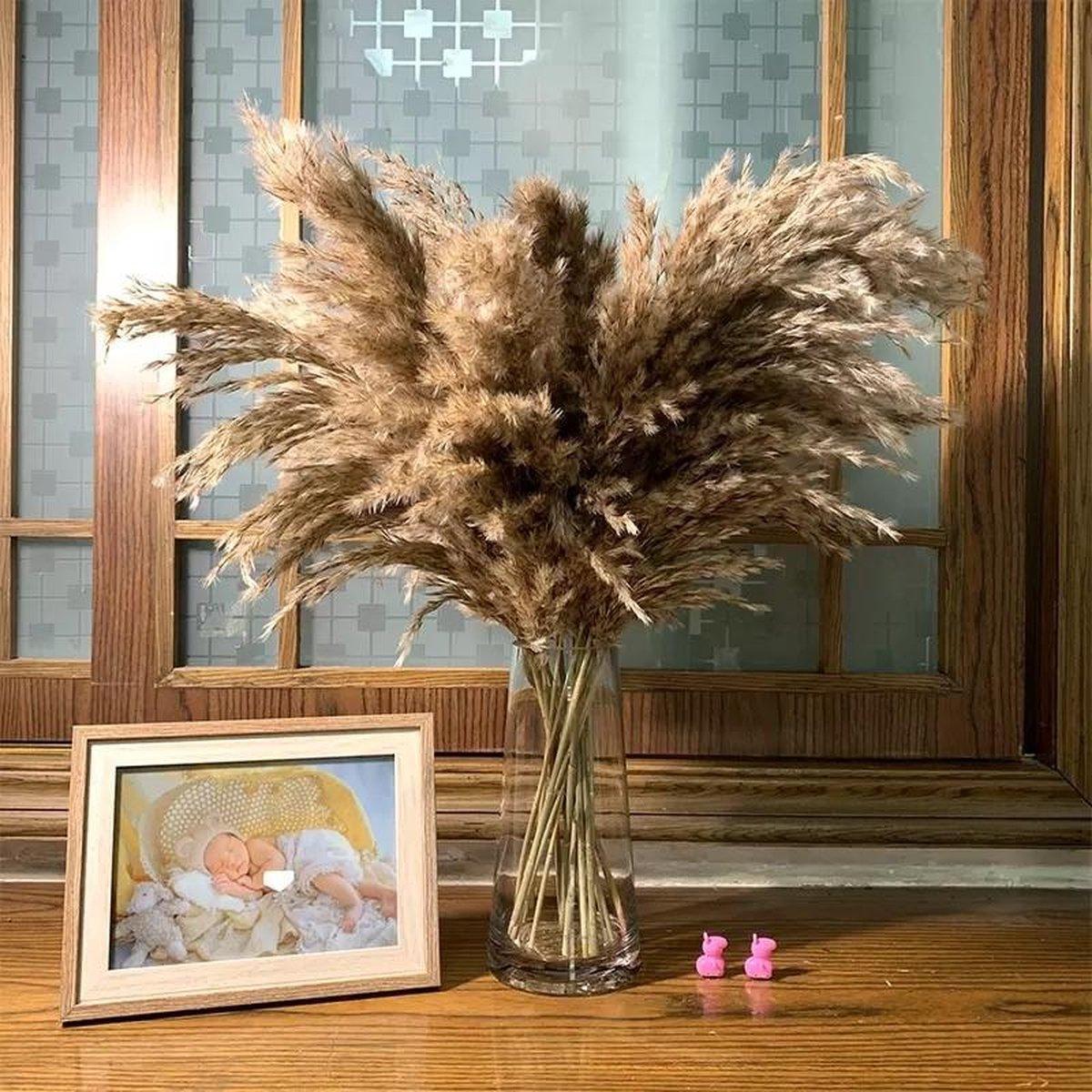 Pampas pluimen   7 stuks   Pampasgras   Droogbloemen   50 / 60cm   Boeket decoratie pluimen   Luxury
