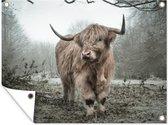 Tuinposter Schotse Hooglander - Bos - Mist - 120x90 cm