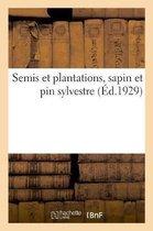 Semis et plantations, sapin et pin sylvestre