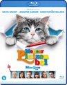 Meneer Pluizenbol (Nine Lives) (Blu-ray)