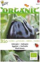 Buzzy Organic - Aubergine Black Beauty BIO