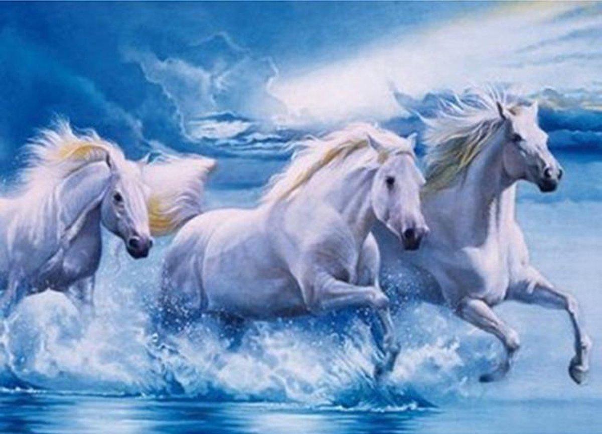 Lynbis® Diamond Painting Volwassenen - Diamond Painting Kinderen - Volledig Pakket - 30 x 40cm - Paarden