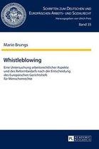 Whistleblowing; Eine Untersuchung arbeitsrechtlicher Aspekte und des Reformbedarfs nach der Entscheidung des Europaischen Gerichtshofs fur Menschenrechte