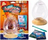 Aqua Dragons Jurassic Eggspress