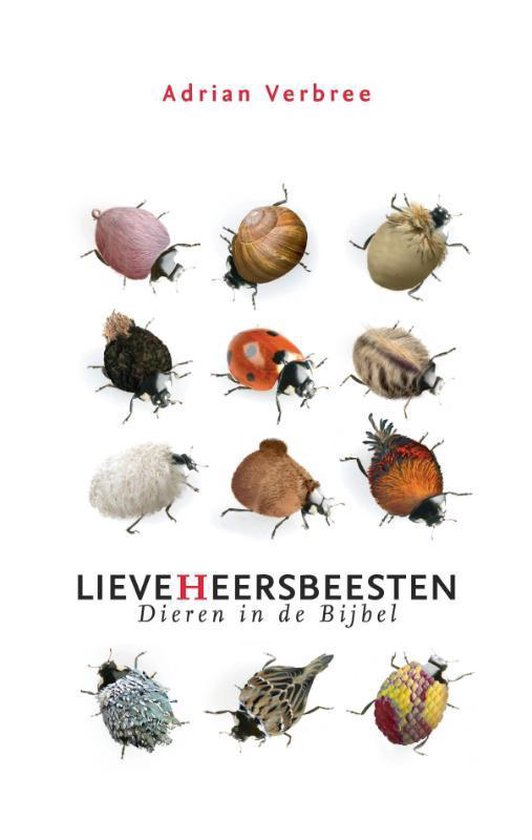 Lieveheersbeesten - A. Verbree pdf epub