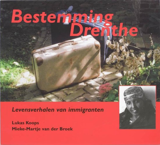 Bestemming Drenthe - L. Koops | Readingchampions.org.uk