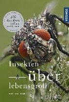 Insekten überlebensgroß