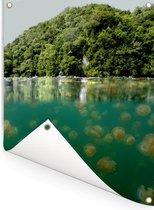 Halve onderwater foto bossen bij kwallenmeer in Palau Tuinposter 60x80 cm - Tuindoek / Buitencanvas / Schilderijen voor buiten (tuin decoratie)