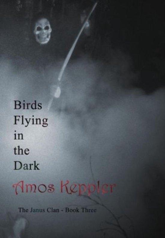 Birds Flying in the Dark