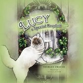 Lucy a Special Ragdoll