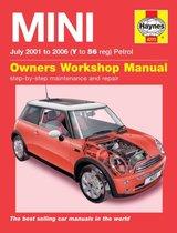 Mini 01-06