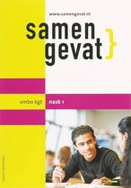 Boek cover Samengevat vmbo-kgt NaSk1 van A. Nienkemper