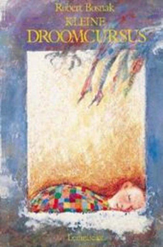 Ontwikkelingen in de Jungiaanse psychologie - Kleine droomcursus - Robert Bosnak |