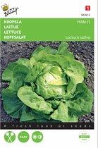 Kropsla Hilde -  Lactuca sativa - set van 9 stuks