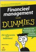 Voor Dummies - Financieel management voor Dummies