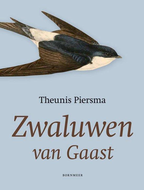 Zwaluwen van Gaast - Theunis Piersma pdf epub