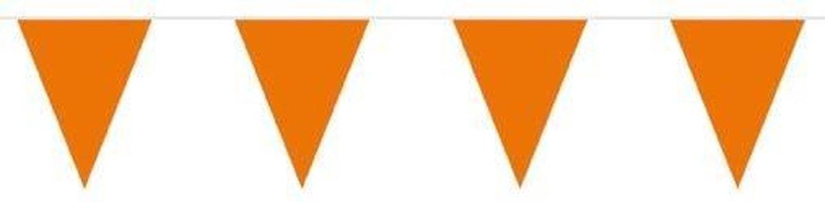 Oranje vlaggetjes - Oranje vlaggenlijn - 10 meter