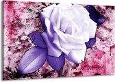Canvas schilderij Roos   Paars, Wit, Roze   140x90cm 1Luik