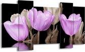 Canvas schilderij Tulpen | Paars, Grijs | 120x65 5Luik