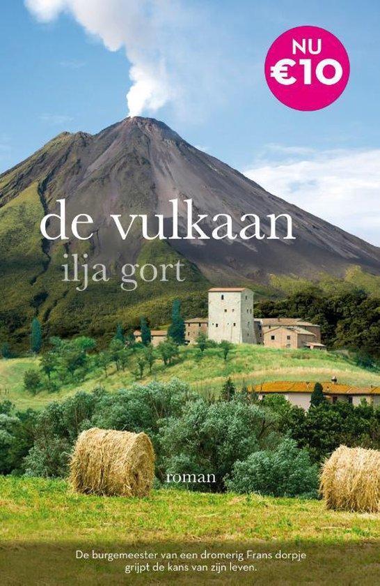 Boek cover De vulkaan van Ilja Gort (Paperback)