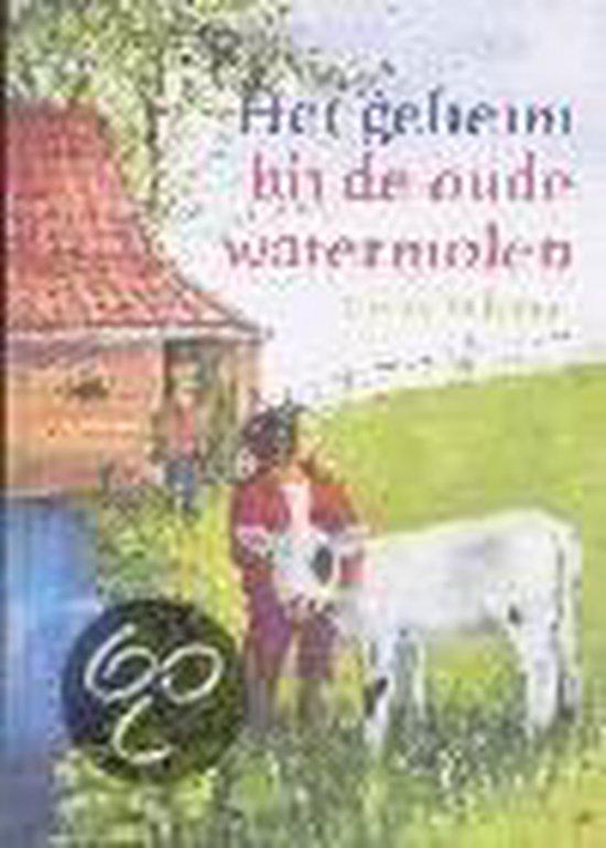 Het Geheim Bij De Oude Watermolen - Gerry Velema-Drent | Readingchampions.org.uk