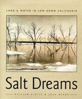 Salt Dreams