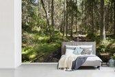 Fotobehang vinyl - Een houten voetpad door de ongerepte natuur van het nationaal park Nuuksio in Finland breedte 390 cm x hoogte 260 cm - Foto print op behang (in 7 formaten beschikbaar)