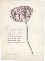 Omslag Plint 64 -   10 poëziekaarten plint met gedicht 'Mijn hert'