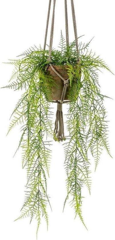 Kunst hangplant Varen in oude terracotta pot 16 cm - hangende kunst plant in pot