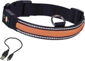 Nobby Honden Verlichtende Halsband - Oranje - 36-51 x 2,5 cm - Verstelbaar en Oplaadbaar