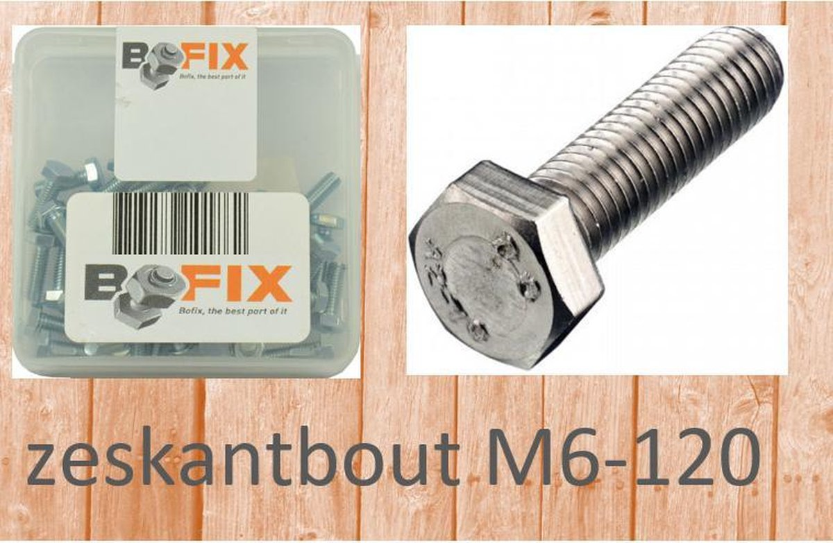 Bofix Zeskant Bout M6 X 120 Mm Verzinkt 12 Stuks (217692) - Bofix