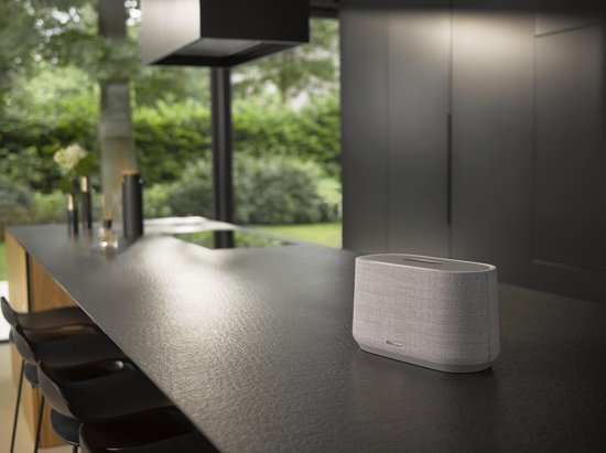 Harman Kardon Citation 300 Grijs - Smart Speaker met Google Assistant