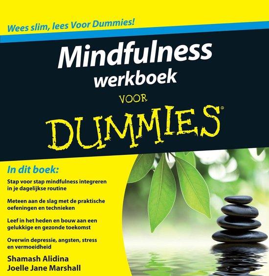 Voor Dummies - Mindfulness werkboek voor Dummies - Shamash Alidina |