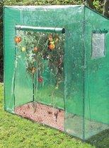 Westfalia Greenhouse tomaten large 200 x 167 x 77 cm