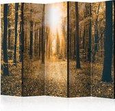 Kamerscherm - Scheidingswand - Vouwscherm - Magical Light II [Room Dividers] 225x172 - Artgeist Vouwscherm