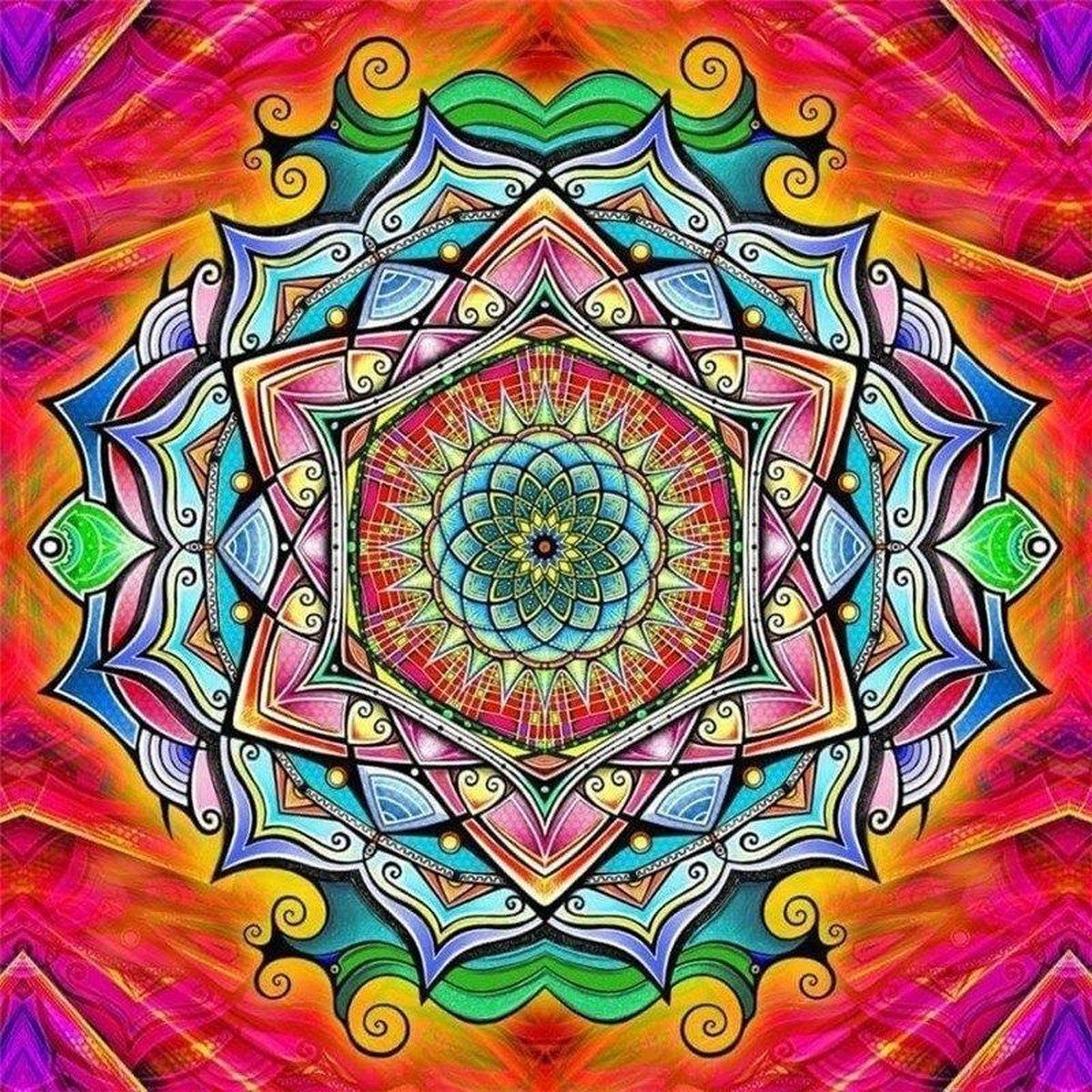 Premium Paintings - Mandala Regenboogkleuren - Diamond Painting Volwassenen - Pakket Volledig / Pakket Full - 30x40 - Moederdag cadeautje