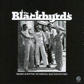 Walking In Rhythm:Essential Selection 1973-1980