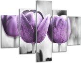 Glasschilderij Tulpen | Paars, Grijs, Wit | 100x70cm 5Luik | Foto print op Glas |  F002792
