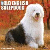 Bobtail / Old English Sheepdog Kalender 2021