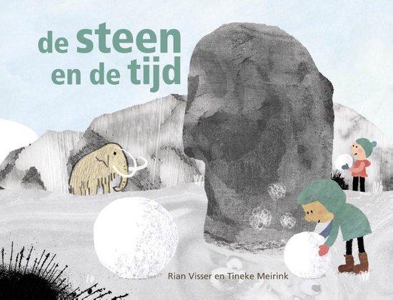 Boek cover De steen en de tijd van Rian Visser (Hardcover)