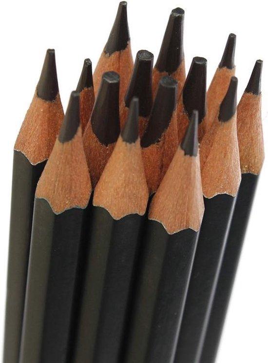 Schetspotloden & Tekenpotloden Set - 14 stuks - Teken Grafiet-Potloden 6B-5B-4B-3B-2B-1B-HB-2H-4H