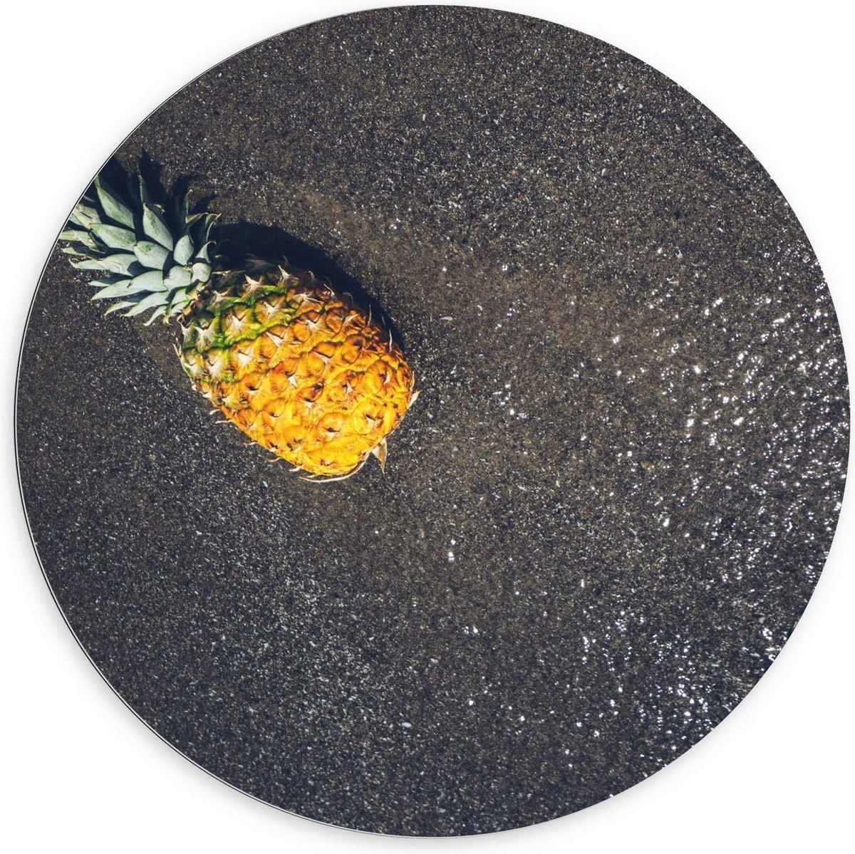 Dibond Wandcirkel - Ananas bij het Water - 100x100cm Foto op Aluminium Wandcirkel (met ophangsysteem)