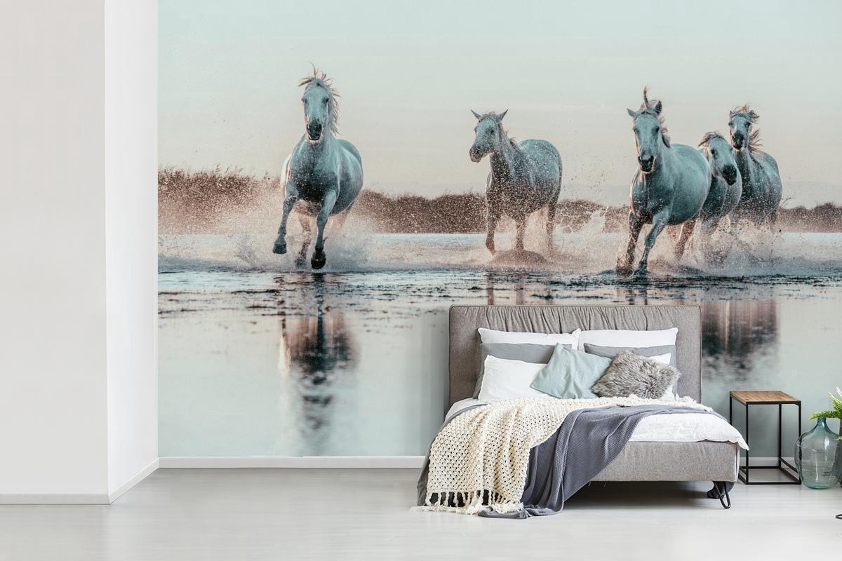 Behang - Fotobehang - Wilde witte paarden galopperen door het water in Camargue - Breedte 390 cm x h