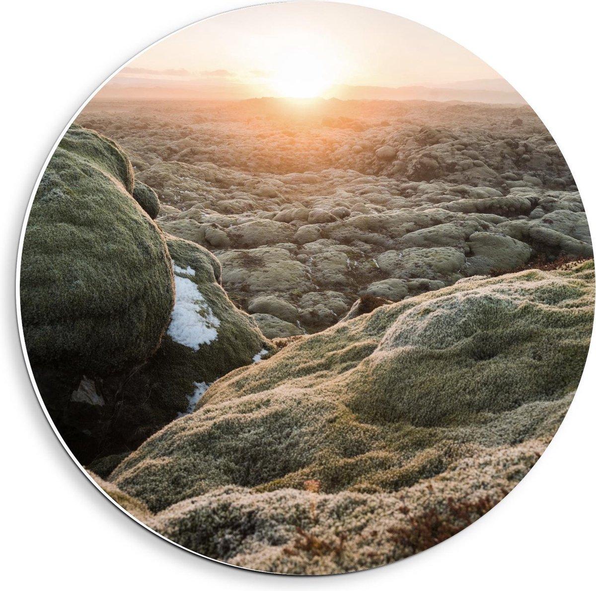Forex Wandcirkel - Mossige Rotsen met Ondergaande Zon - 40x40cm Foto op Wandcirkel (met ophangsysteem)