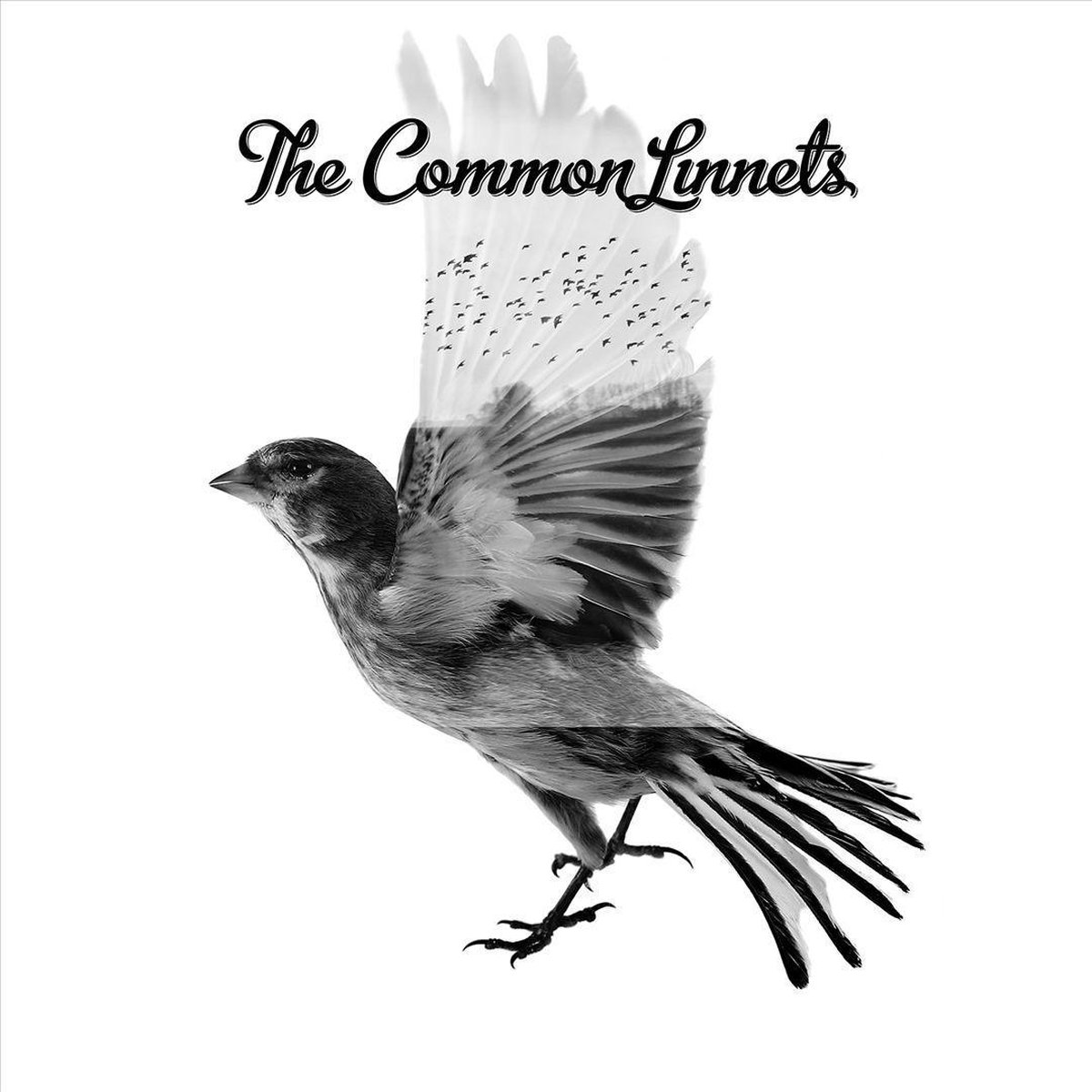 The Common Linnets (LP) - Common Linnets