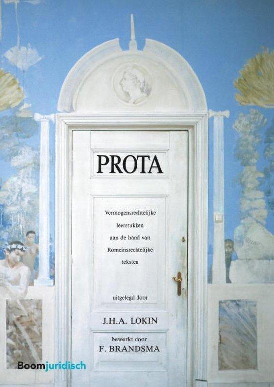 Boek cover Boom Juridische studieboeken  -   Prota van J.H.A. Lokin (Paperback)