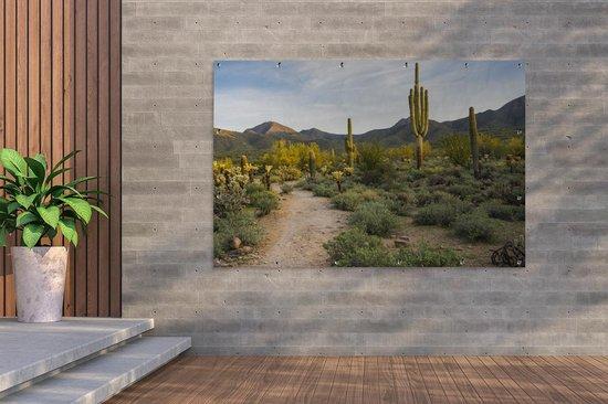 Tuinposter - Saguaro cactussen in het ochtendlicht - 180x120 cm - XXL