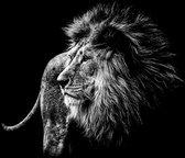 Schilderij -Leeuw in zwart/wit, magisch, 2 maten, wanddecoratie