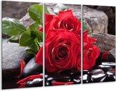 Glasschilderij Roos | Rood, Zwart, Groen | 120x80cm 3Luik | Foto print op Glas |  F006149